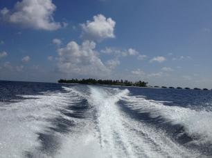Blick auf die Insel